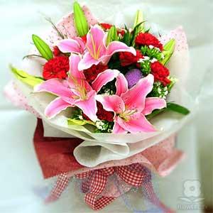 ID:5076 - Carnations sea